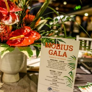 Mobius Gala by Beacon Hill Catering